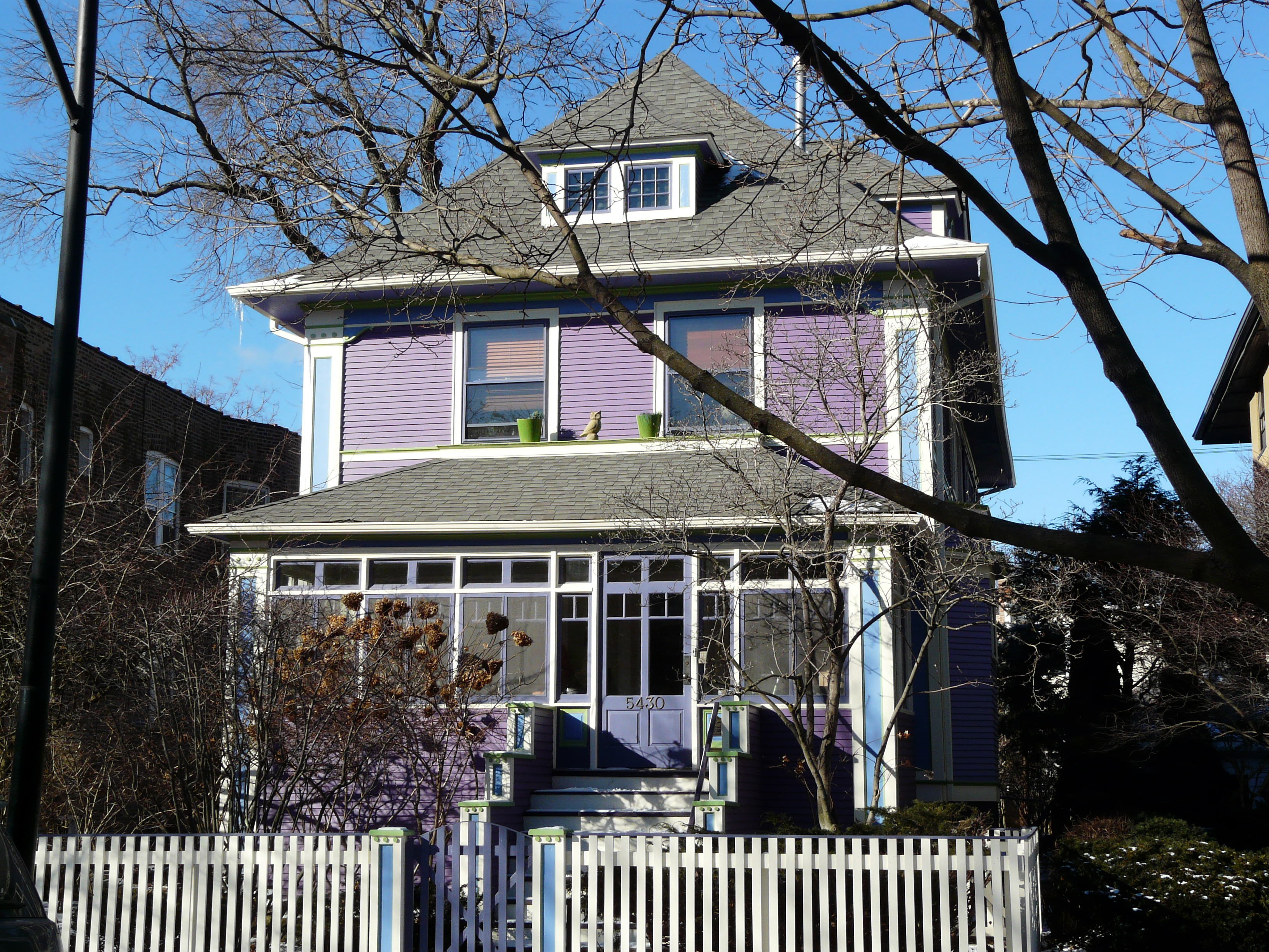 Old Irving Park Painted Lady